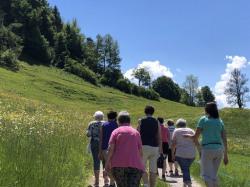 KAC_Riefensberg_Kraeuterwanderung_2019__4399
